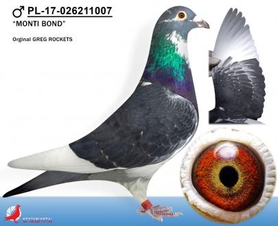 GOL_03F2E2-A6B612-91402A-54A726-9DDE2C-72376B.jpg