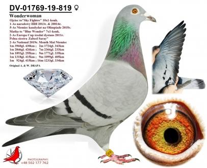 GOL_121DFC-81C209-BED30D-57F69E-CEB1C5-C36C59.jpg