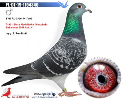 GOL_1452C3-5F692A-AB8486-AC866E-02B2D4-DF1963.jpg