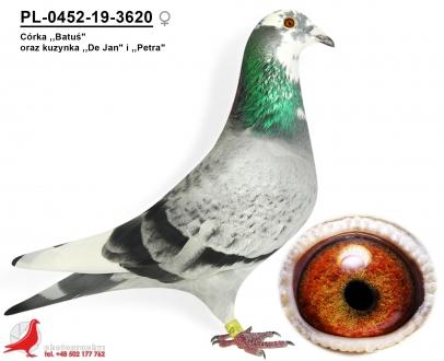 GOL_188BBF-BD2520-1CD907-D0AF99-2E0C29-3DA79A.jpg