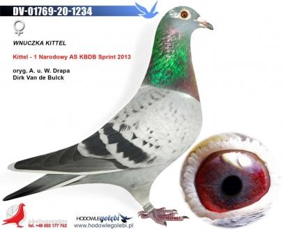 GOL_21EA27-9A2C62-647391-0B39BD-CF3C78-A40848.jpg