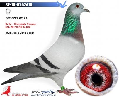 GOL_2705C5-84762B-F67783-F553F7-F45A25-121E3C.jpg
