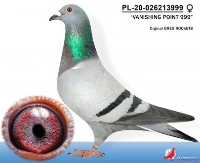 GOL_2B2147-8AB344-D18B49-95F197-F1B7BA-016283.jpg