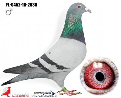 GOL_2FEBE3-50914E-0C0690-4D2845-F406D7-E1023C.jpg