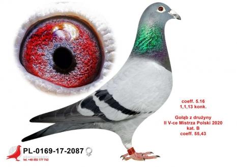 GOL_333775-0098C5-F72AD8-BA9386-5FFE08-03794A.jpg