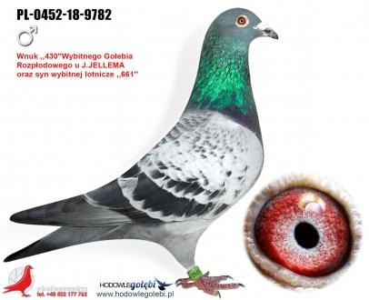 GOL_36AADD-39ED17-61573D-ED9308-8E780C-160EA5.jpg