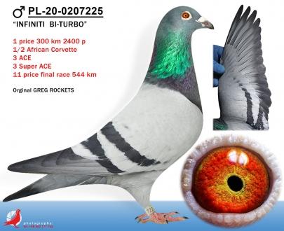 GOL_3A5042-A9F5A8-D1F672-21D597-371C03-2F4720.jpg