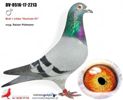 GOL_3BB53A-BC9EC8-4126E9-880C34-1E6626-6B2F4F.jpg