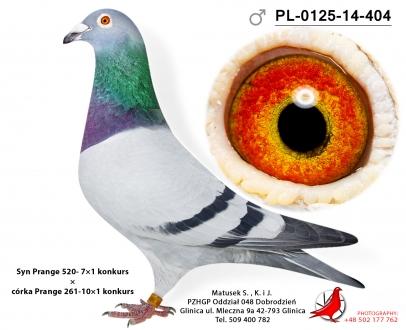 GOL_3C28AE-36D1EA-D67E22-860AE9-F28790-7C1D25.jpg