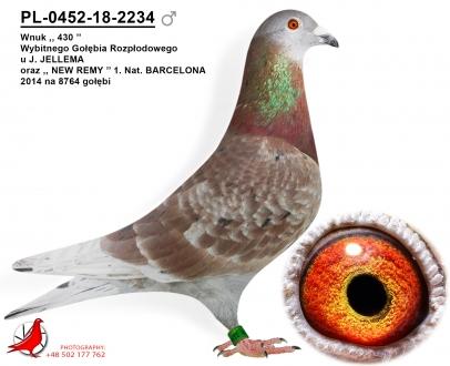 GOL_3D61B0-C577AF-956EE1-2A7977-AE1EA2-C2B27C.jpg