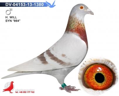 GOL_3E5F87-EF3003-AEEA57-6F5EF6-B7D266-2C4468.jpg
