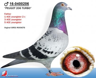 GOL_3EF722-3AAB1B-F08409-AB0F40-B47E74-FCDD6E.jpg