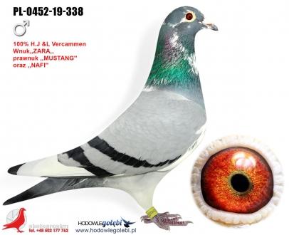 GOL_3F7D12-C44BD7-B48DF6-B4A896-033DF0-3CB1F6.jpg