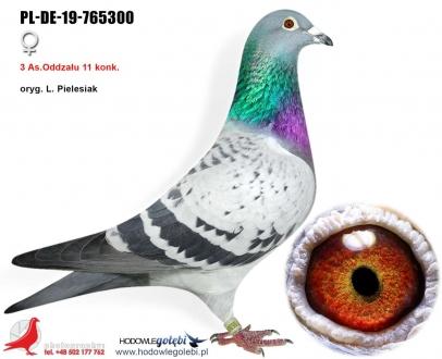 GOL_3FDCEE-263D3B-639D12-E7B00D-A02B32-508C54.jpg