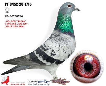 GOL_404257-E95896-149237-71D721-211D14-ED57DB.jpg