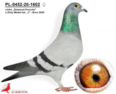 GOL_431030-594260-19172F-BB8525-E7DA1F-4FFD91.jpg