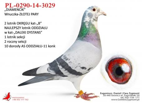GOL_456CD4-1043E7-E80FCF-C76B4A-B524A1-FF4F99.jpg