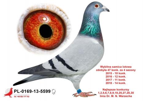 GOL_478686-4137AD-A5CACB-DF0984-0FBFFA-B18A59.jpg