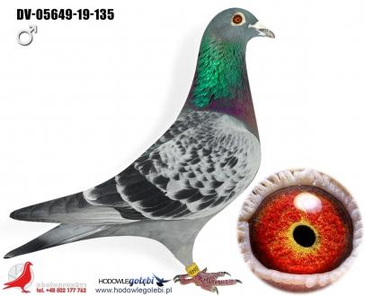 GOL_4BDE6D-1F35A1-E59EA6-920CA8-C0E2A3-7FC880.jpg