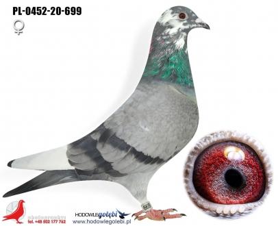 GOL_4CB901-B4BC3D-89011C-3DAAD8-26DAA9-82D95F.jpg