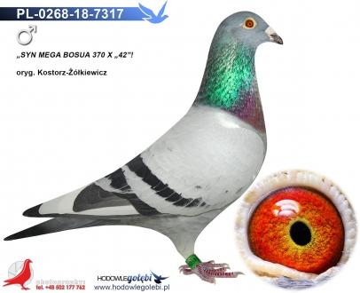 GOL_4CE911-F4E67D-8D6088-CE4BCC-E21B6A-5C3B76.jpg