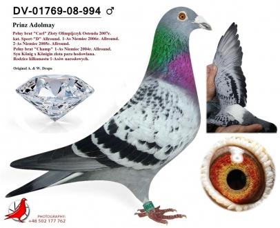 GOL_5363D9-CD0825-F67975-E97790-E4B5DA-59D3F6.jpg
