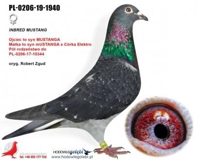 GOL_54FA43-8351C9-C2A9C3-52863A-DDD695-A5CFDA.jpg