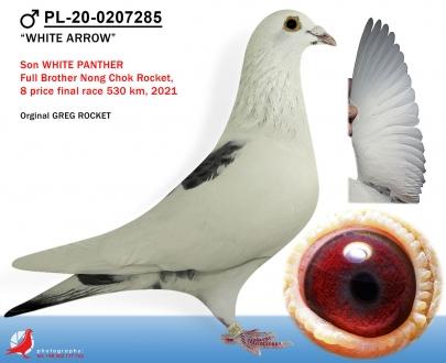 GOL_5A0360-8F474B-0E92FF-6A5BA4-6E10B4-9DBED8.jpg
