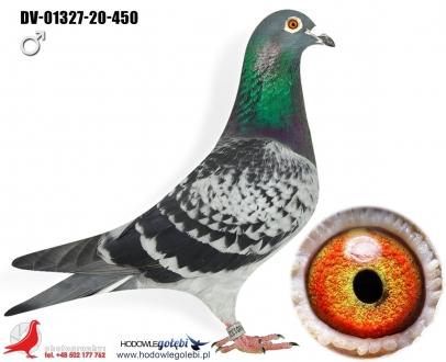 GOL_5DEDFF-C796BF-537A1C-B3D771-0E45B1-E20A3A.jpg