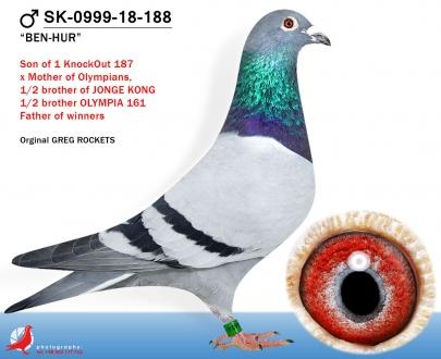 GOL_600D51-9C68E4-269A1F-7B0813-16FE1E-3101C3.jpg