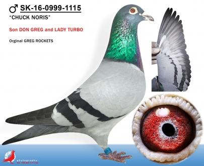 GOL_600FC1-E3A264-C63089-1FA394-294145-87C3C0.jpg