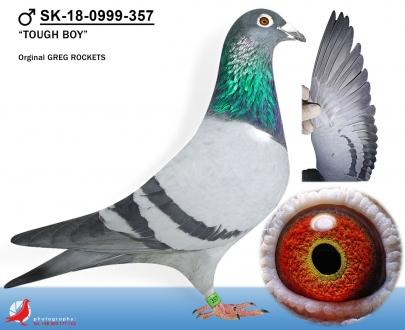 GOL_60AF2B-586371-21BDEF-B80FF9-8B0647-E3D2CD.jpg
