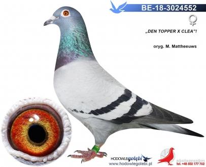 GOL_643228-7CE687-7D6E35-849C19-B99F2D-8FAFD5.jpg
