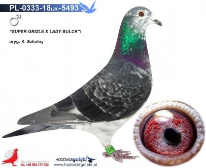 GOL_646330-8AB091-1DDCD7-B19931-14A64B-A460CC.jpg
