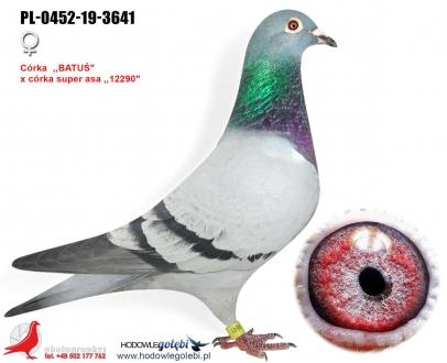 GOL_6641B3-1AA2C3-240115-5D68F8-7309FE-E9D0FF.jpg