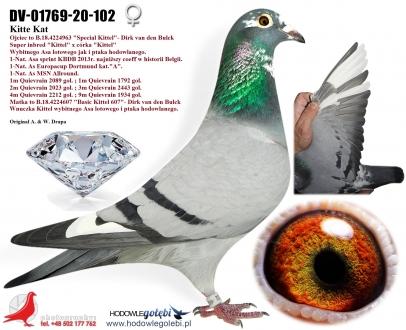GOL_66EE1B-5C77A6-C51FB2-5CAFB2-A2F6F2-1A7C9A.jpg