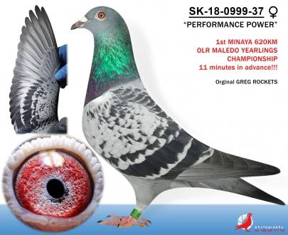 GOL_6A0ADB-3EE70F-F7AAAB-4C1BBD-992950-53E98D.jpg