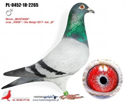 GOL_73C8D3-415432-C73605-DBA97B-0E4A7A-9E1DA4.jpg