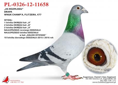 GOL_74B360-846AD0-8BF508-5A85AD-0DA9A4-EE38C1.jpg