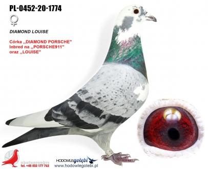GOL_779E33-8FE879-901B59-EA81F4-0338E7-3984E2.jpg