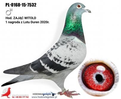 GOL_783CCC-110229-436D9D-FA93C9-0E5643-05BED0.jpg