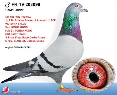 GOL_79497A-0DE45D-E7069A-582CF4-D7E3A1-5E645C.jpg