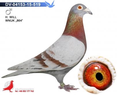 GOL_7ADD43-007BBF-5B5C05-68EB34-87FE93-3308D0.jpg