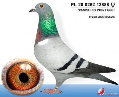 GOL_7B59AF-9AB01B-D274A5-4136A4-B0789F-222D05.jpg