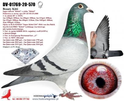 GOL_7F0446-9A5D40-1465ED-6DEB4B-5E0BBE-F0BA51.jpg