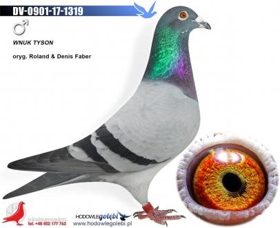 GOL_80DE2C-EED890-3586A3-55F5E4-9F7684-6FAD87.jpg