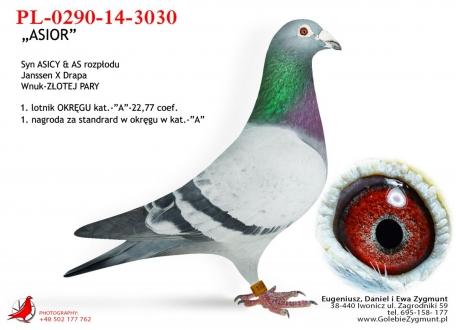 GOL_839F1F-C1EF05-28B311-C80FF7-9C4BA1-A3E8D4.jpg