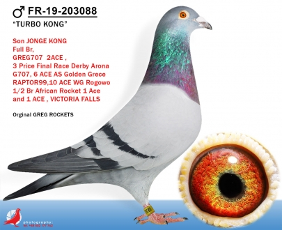 GOL_842FF4-4FA74E-6653BD-E6956F-DD24D7-E8B012.jpg