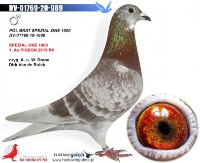 GOL_871EAE-2DA403-EB7A78-A6EE4E-4A730E-E5BF4C.jpg