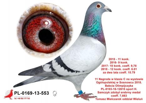 GOL_93679A-6B30CC-636F0C-62CC34-824635-9FE251.jpg